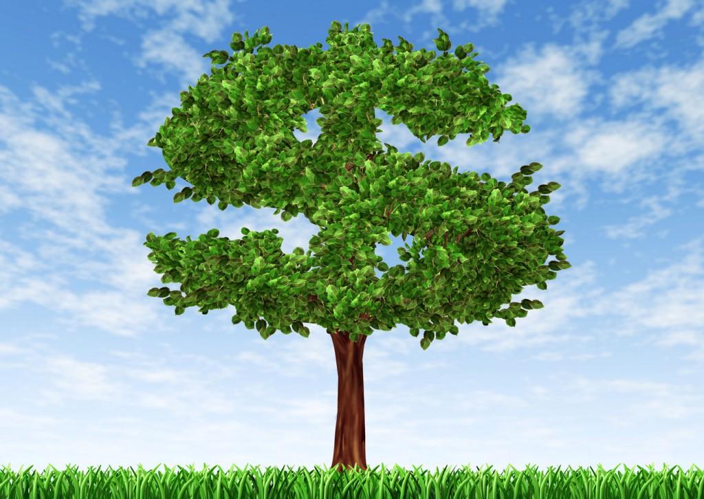 1400x_money_tree_shutterstock_69258214
